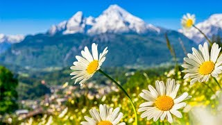 Switzerland  AMAZING Beautiful Nature with Soothing Relaxing Music, 4k Ultra HD by Tim Janis