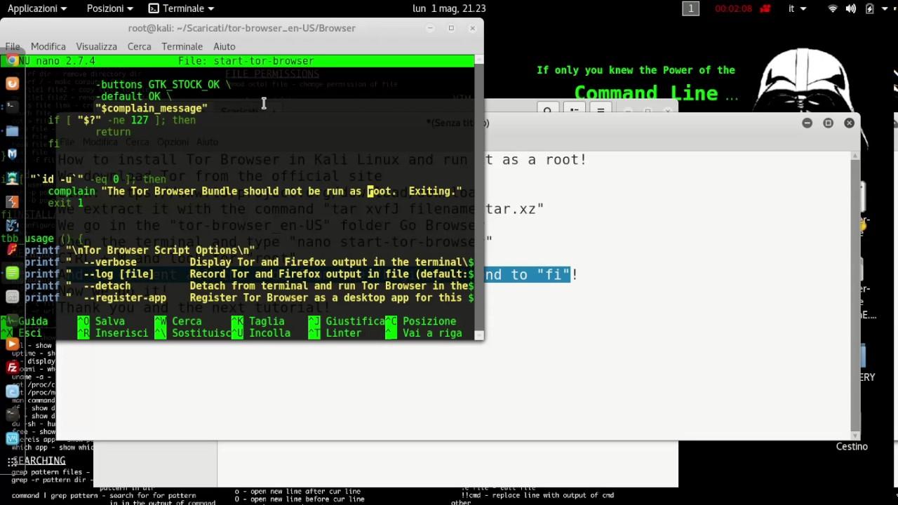 tor browser kali root