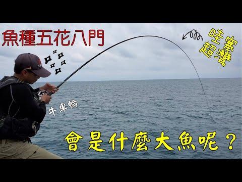 2020.04.26!^^Taiwan Hualien fishing