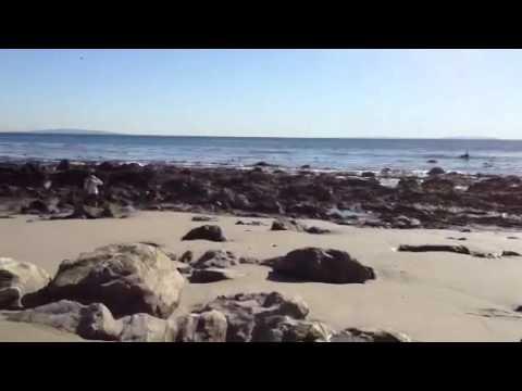 Malibu Latigo Shore Beach Homes For Sale