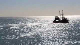 Jonteknik - Shoreline