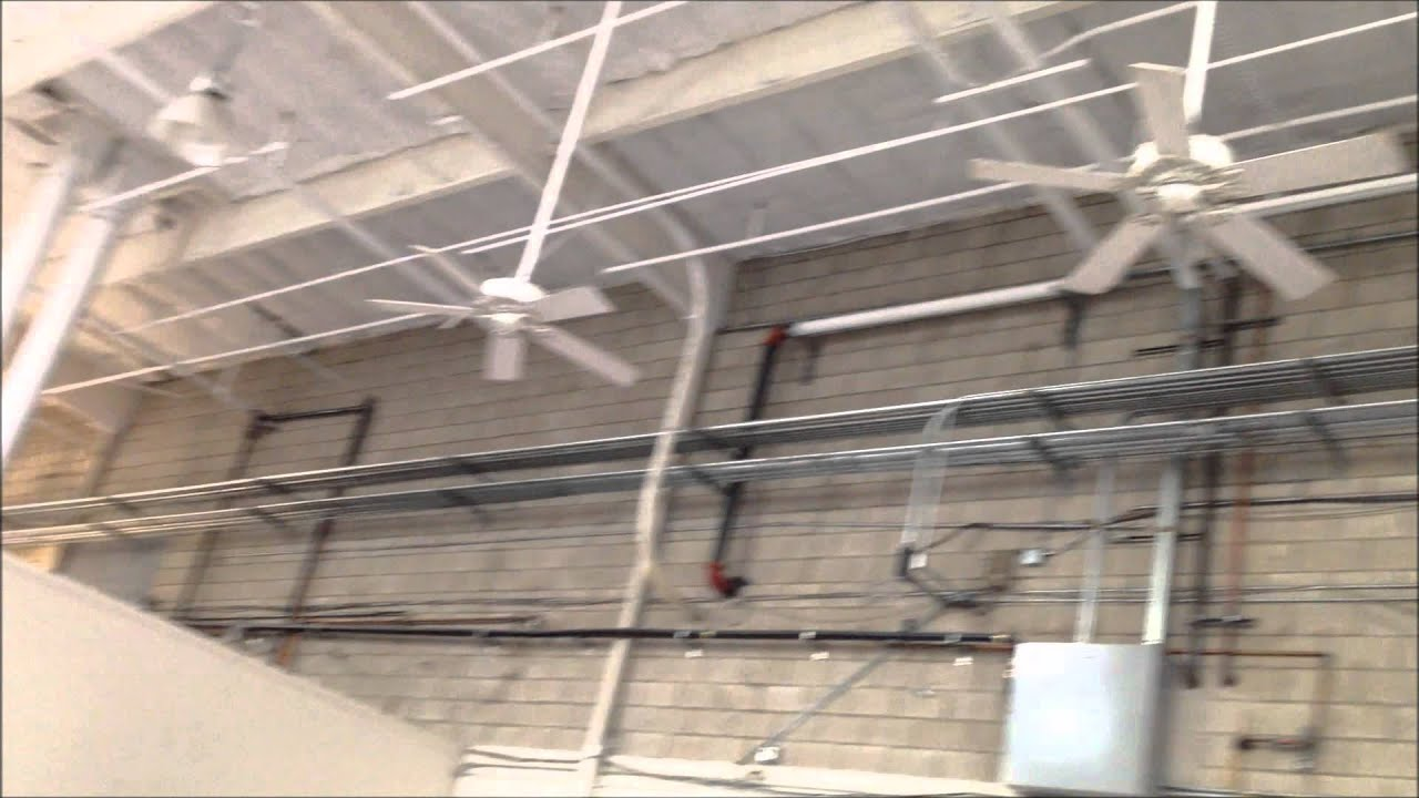 ceiling fans inspirational of costco at awesome