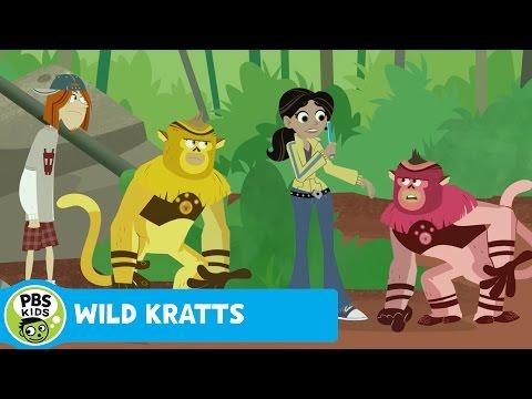 WILD KRATTS   No Color, No Fun   PBS KIDS