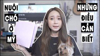Vlog#14 : Những điều cần biết trước kнi nuôi chó [Cuộc sống ở Mỹ của Gà Tây Tây]