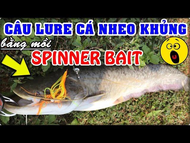 CÂU CÁ BẰNG MỒI LURE GIẢ | Câu toàn cá nheo to bằng mồi giả Spinner Bait cực thích | Giới thiệu điểm