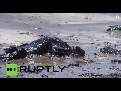 USA: Cleanup crews hit the beach after oil spill blackens 9-mile stretch
