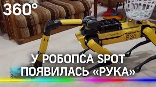 Робособака Spot с рукой готова к релизу Вoston Dynamics показала на видео что она умеет