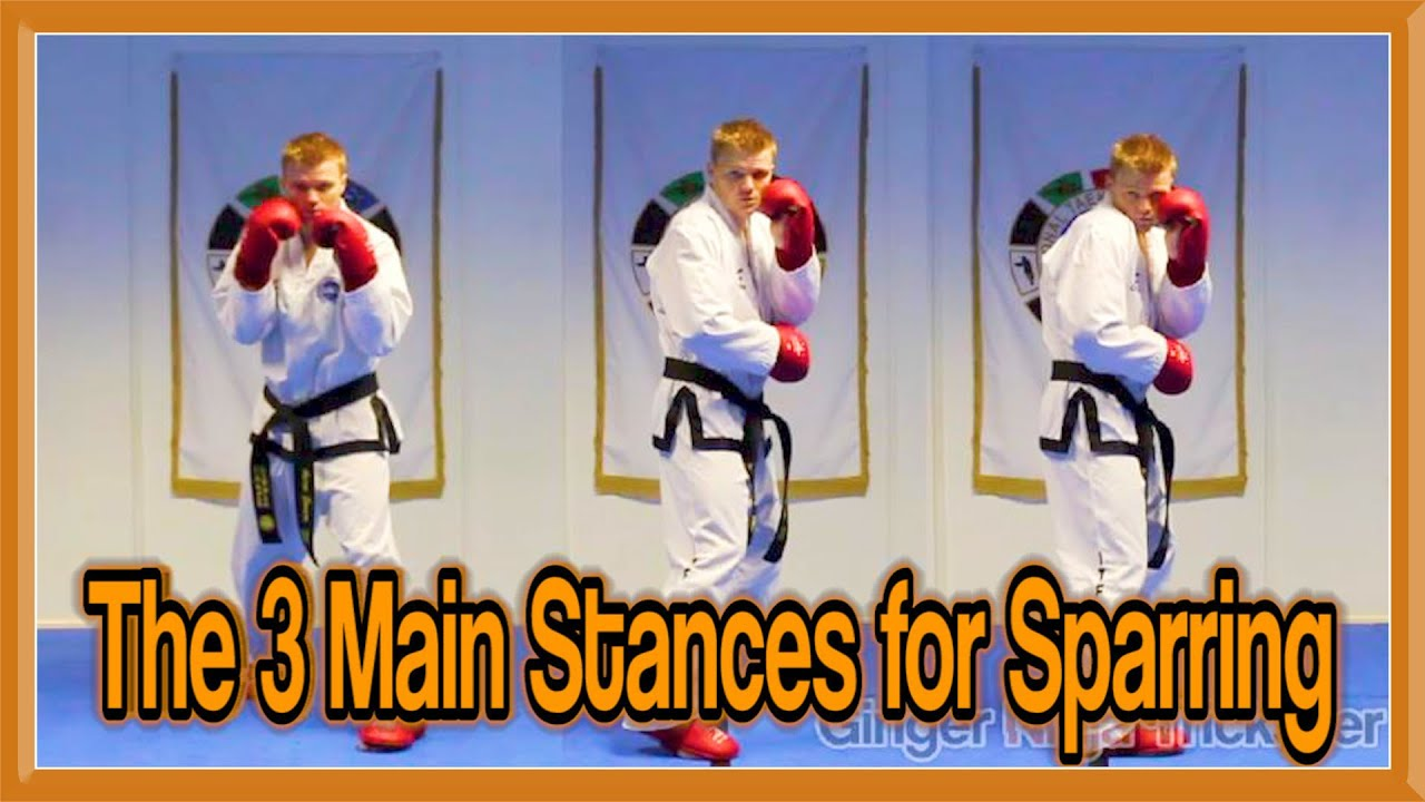 Taekwondo Sparring The 3 Main Stances Gnt Martial Arts Youtube
