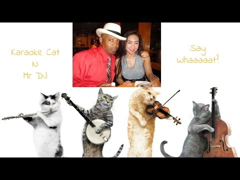 Karaoke Cat N Mr DJ - Vlog 003