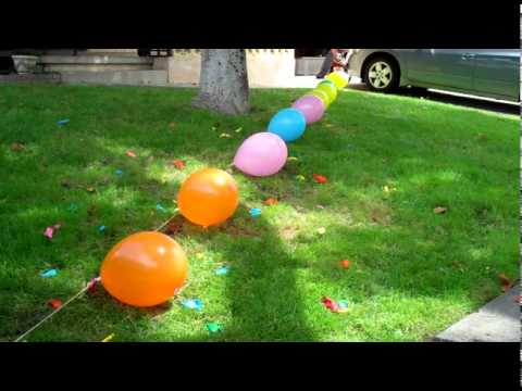 NEW World record dog Balloon popping