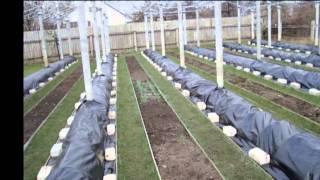 укрытие винограда на зиму(, 2013-12-05T20:24:58.000Z)
