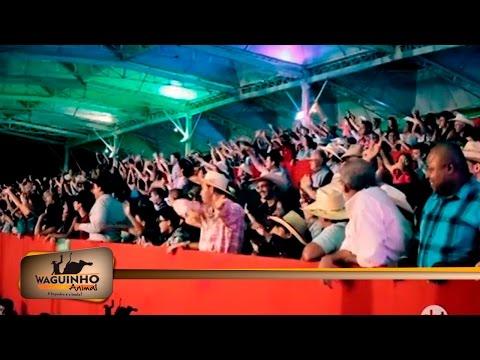 Waguinho Animal - Papo Animal em Rodeio de Ouro Verde 22/04/17