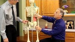 hqdefault - Quadratus Lumborum And Back Pain