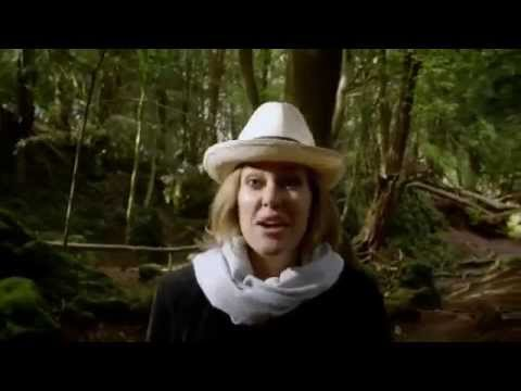 The Secret Life of Books: The Mabinogion - Cerys Matthews