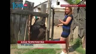 В Агаповском районе маленькую девочку загрызла насмерть собака
