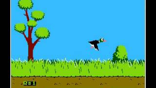 Duck Hunt Family Computer Video Game for PC