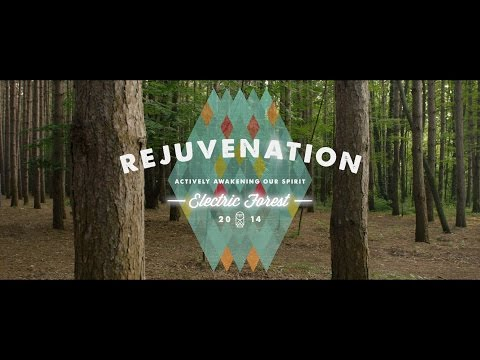Electric Forest 2014 Part III: Rejuvenation