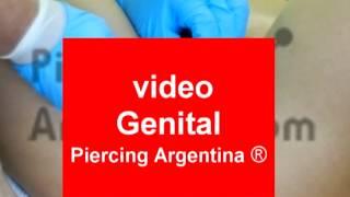 Piercing Genitales Piercing genital femenino Piercing Argentina ®