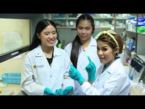 ฉายแวว [by Mahidol] ซีรีย์ งานวิจัยนักศึกษา : พระเอกเซลล์เดียว
