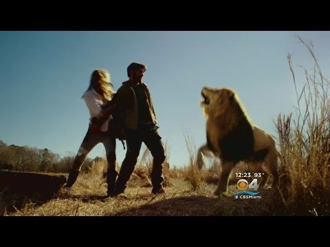 """James Patterson & Cast Members Discuss New CBS Series """"Zoo"""""""