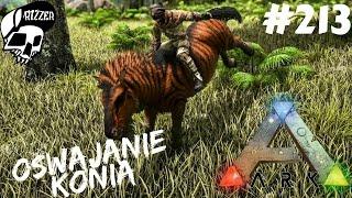 ARK Survival Evolved PL #213 - Oswajamy Equus - Koń jak z Rodeo - Patch 256