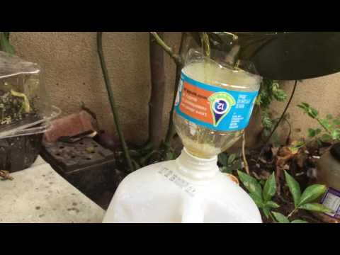 How to dispose  used cooking oil
