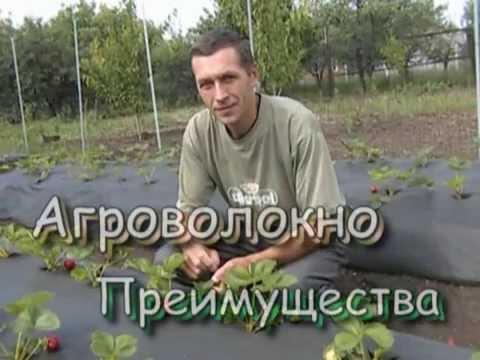 АлисА - Трасса Е-95 HQ (Дурень) Москва - Питер - YouTube