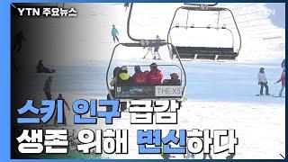 스키 인구 급감...생존 위해 변신하는 스키장 / YTN