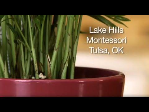 LAKE HILLS MONTESSORI SCHOOL