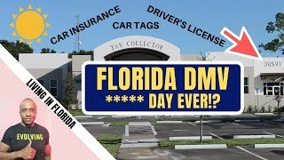 Florida DMV, Car Insurance, Driver's License & Plates | Tampa Florida Move