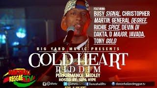 Cold Heart Riddim Official Video Medley ▶Big Yard Music ▶Reggae 2016
