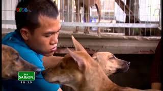 Hướng dẫn nuôi chó phú quốc ( chương trình sİnh ra từ làng VTV6 ) Tưởng Văn Quý