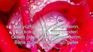 Mustafa Demirci - Güllere Vurgunum