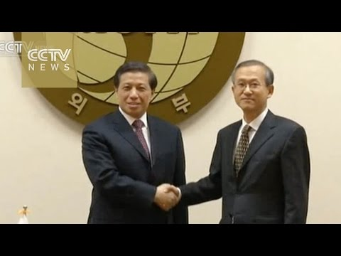 China opposes deployment of THAAD missile system in S. Korea