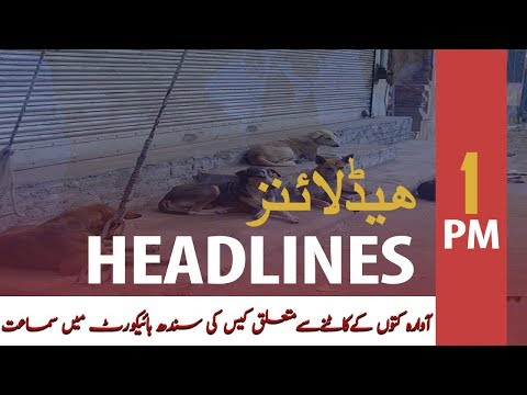 ary-news-headlines-|-supreme-court-hearing-today-on-stray-dog-bites-|-1-pm-|-22-oct-2019