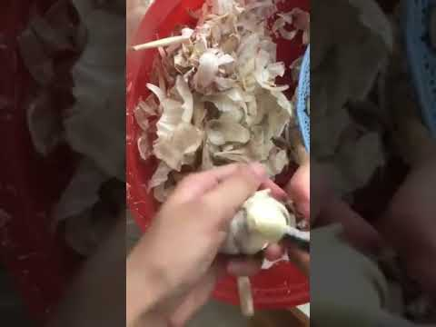 Mikey - Hack: Peeling Garlic With a Knife