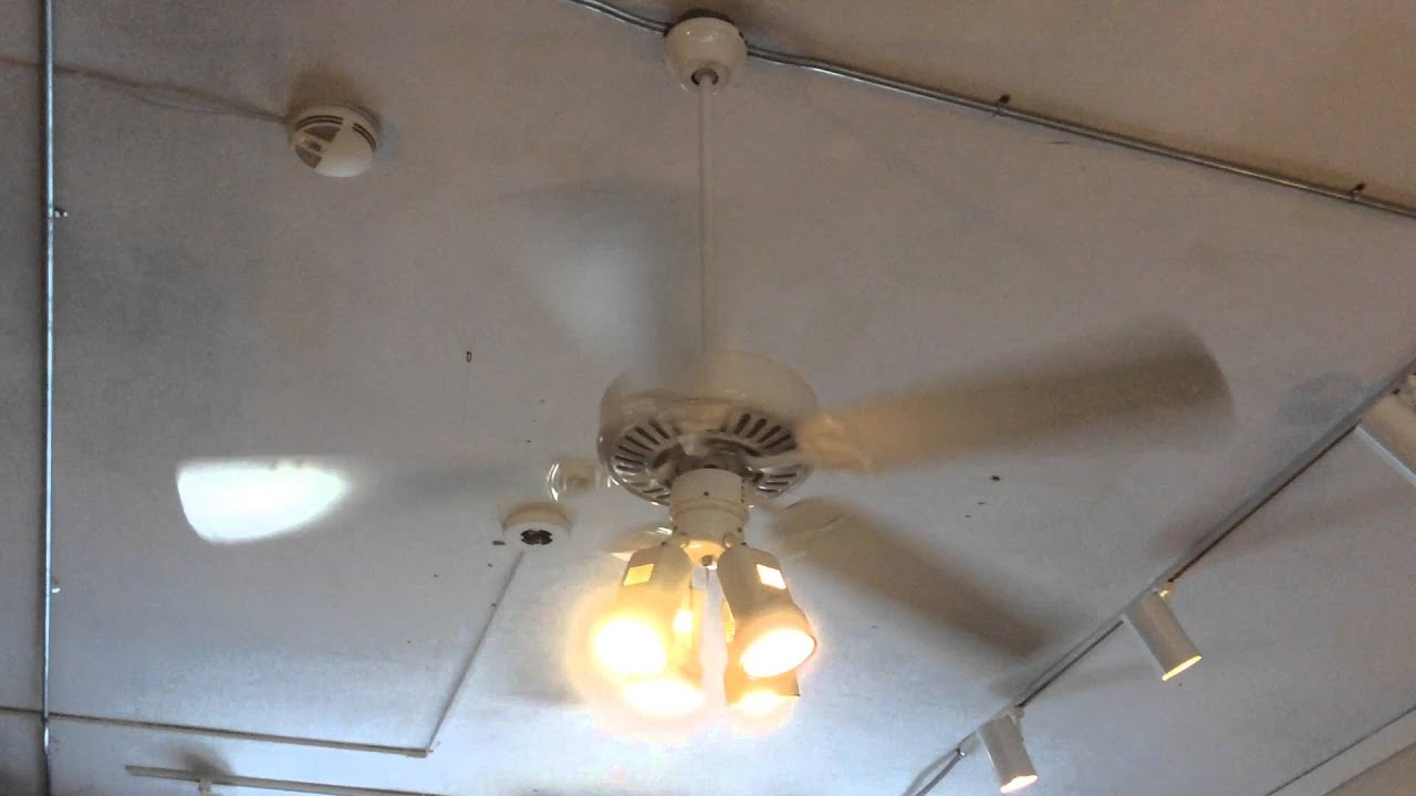 "52"" Harbor Breeze Builder Ceiling Fans at a Coffee Shop"