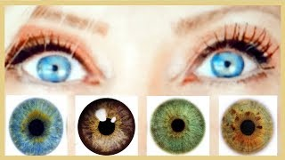Colours That Make Your Blue, Brown, Green Or Hazel Eyes Pop! Make Your Eyes Stand Out!