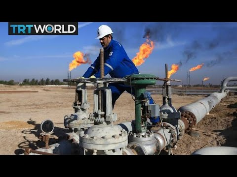 Saudi Arabia calls on OPEC to cut oil exports | Money Talks