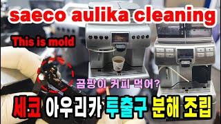 saeco aulika coffee machine cl…