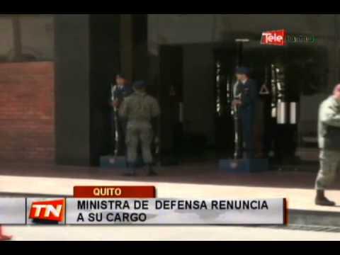 Ministra de defensa renuncia a su cargo
