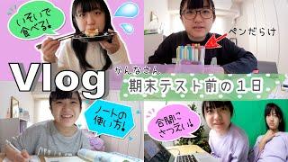 ★Vlog★かんなさん期末テスト前の1日〜今回は負けられないぞ!〜