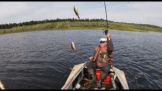Клёвая рыбалка  Часть 3  Окунь как из бочки  Пол центнера за пол дня