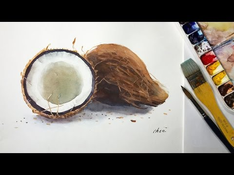 Watercolor painting of two coconuts