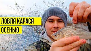 Веселая рыбалка на карася осенью Рыбалка в Хабаровске Курица на углях
