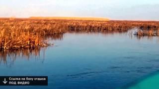 астрахань база отдыха астра(Сайт → http://bit.ly/1K09GRe?rp=281 ◅ Все о рыбалке астраханская область. Рыбалка в Оренбургской области. Форум..., 2015-02-13T15:49:59.000Z)