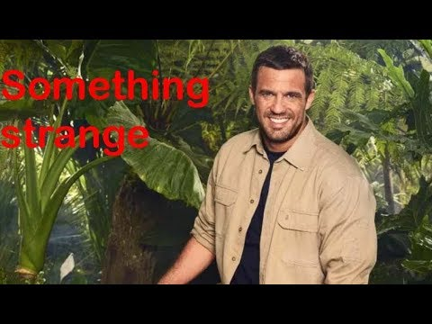 Everything you want to know about jamie lomas
