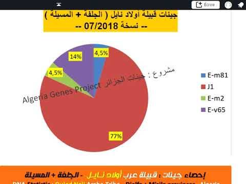 Y- ADN des Ouled Nails - جينات أولاد نايل الجزائر Ouled Nail Y-DNA Algeria