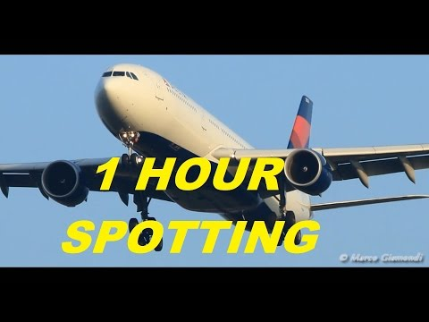 Rome Fiumicino Airport - 1 HOUR of Spotting!