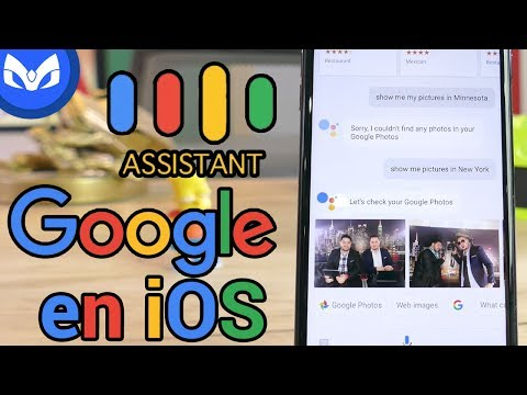 ASI ES GOOGLE ASSISTANT EN IOS